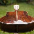 violao-classico-jacarandá-da-bahia_fundo_2